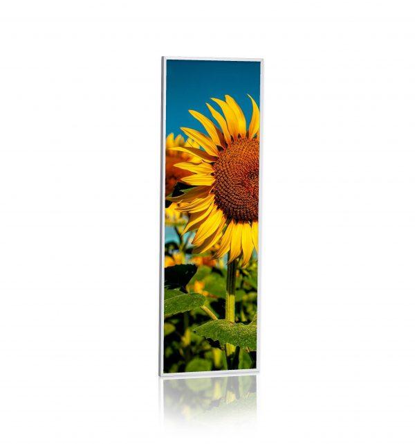 pannello ad infrarossi Raffaello 30x90 300w stampato quadro personalizzato