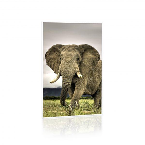 pannello ad infrarossi Raffaello 60x90 600w stampato quadro personalizzato stampato termoquadro