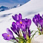 riscaldamento aggiuntivo pannelli infrarossi aiuto nelle mezze stagioni